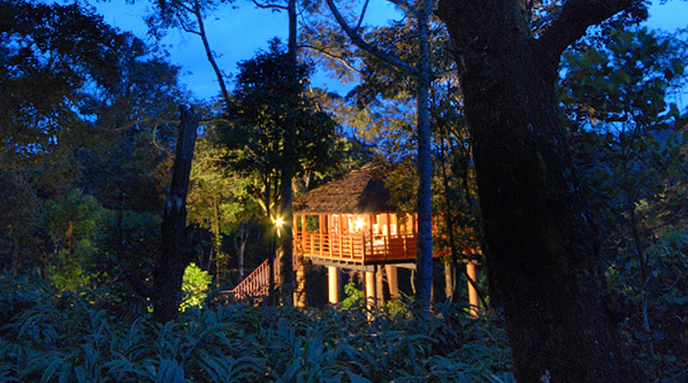 plantation resort thekkady, kerala