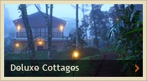 Honemoon Cottages, Deluxe Cottage, enjoy the true nature, plantation tour, thekkady, Kerala