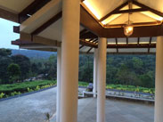 Treetop Resorts Thekkady
