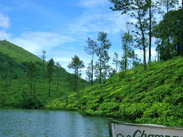 Adventure mountain jeep trip at thekkady, kerala vandanmedu,Carmelia haven, luxury hotels and resorts Vandanmedu, thekkady, kerala, accommodation in thekkady