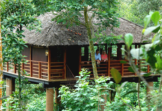 Cardamom plantations Club Tree House in Thekkady, Jacuuzzy villa Resort, Kerala, India